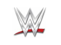 WWE Professional wrestling company